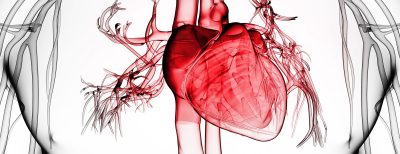 καρδιακή ανεπάρκεια καρδιολόγος κοντός βασίλειος ψυχικό